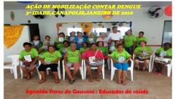 DengueCANA-27Jan16 (3)
